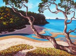 Cooks Beach Estuary 440x330