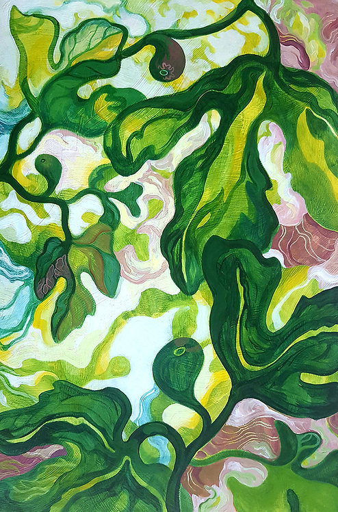Fig Botanical