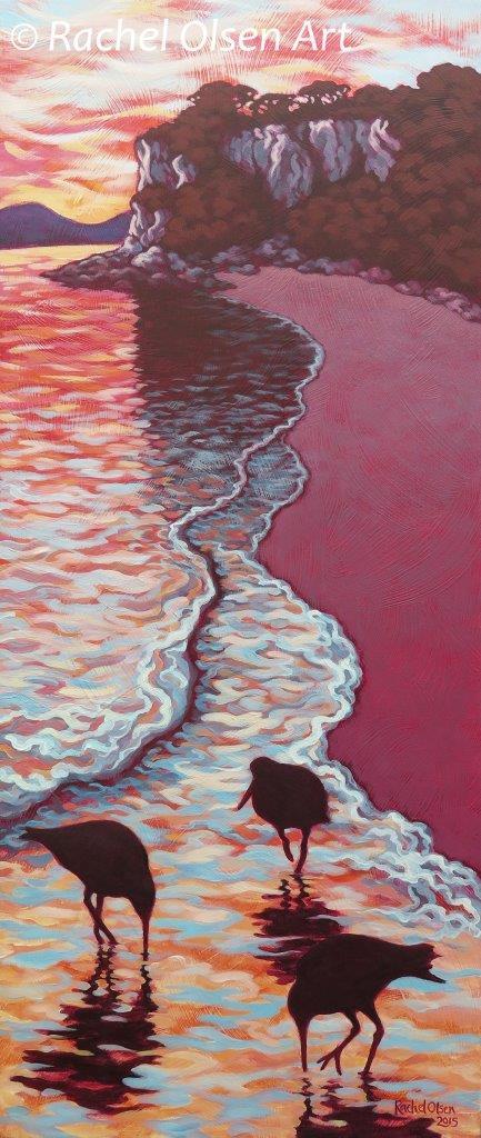 Oystercatcher Sunrise Lonely Bay