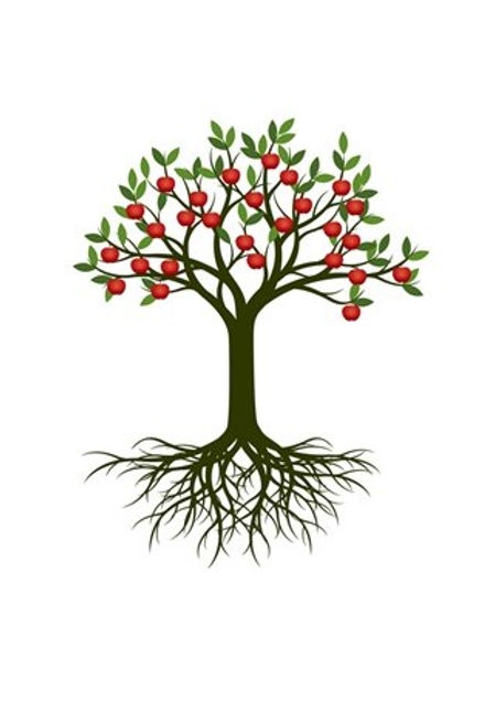 Fruitful Tree and Roots.jpg