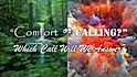 Calling or Comfort - To Which Will We Re
