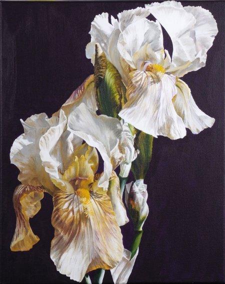 Sarah Caswell Studio & Gallery