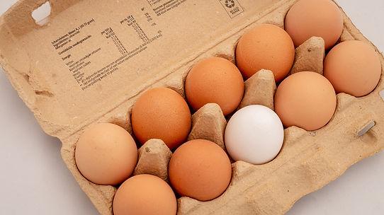 eggs-3446869_1920.jpg