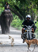 Motorcycle Tours in Northeast India