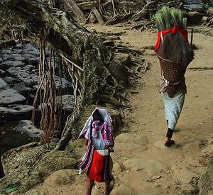 Family tour of Meghalaya .jpg