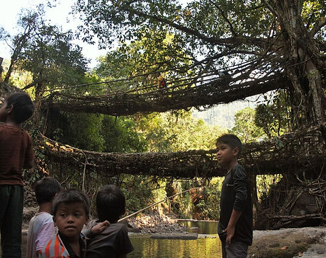 Meghalaya Multi-activity tour