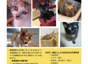 「譲渡会 in まなび・福祉フェスタ」のお知らせ
