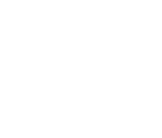 MS-icon.png