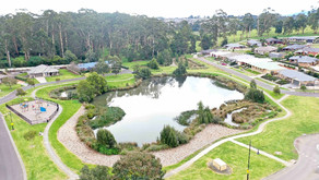 WSUD: The rise of Urban Wetlands and Waterways.