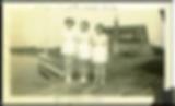 seawifehistoryimage.png
