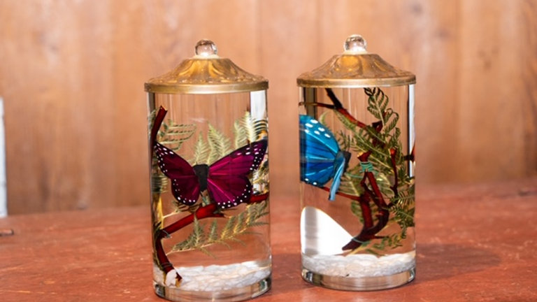 Lifetime Oil Candles- Half Butterfly