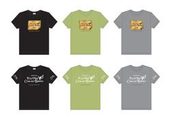 Camisas 2013