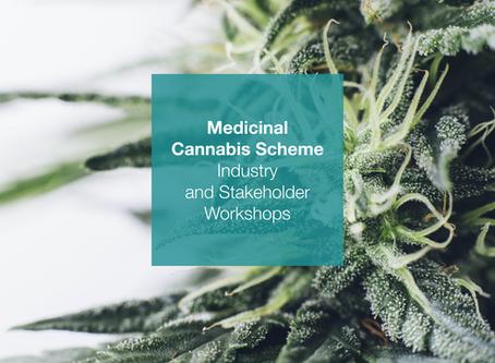 Medicinal cannabis workshops shine light on licensing for industry