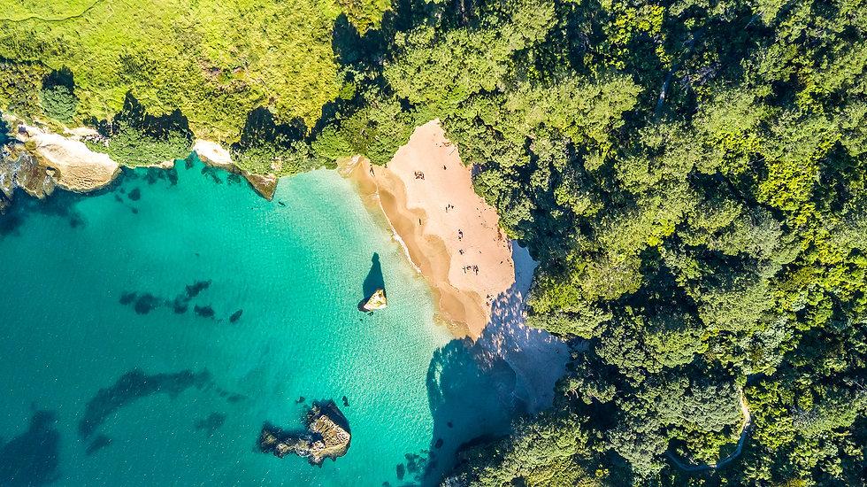 Helius Auckland New Zealand.jpg