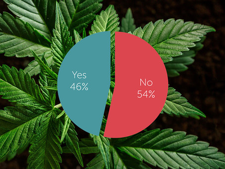 Medicinal cannabis will deliver despite referendum failure