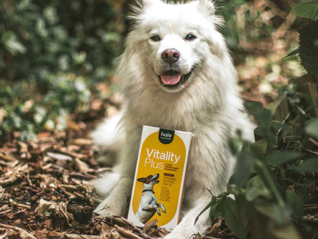 New Hale Animal Health products for pets taking off