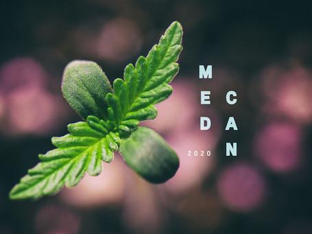 Cannabis summit to lock in gains despite referendum outcome