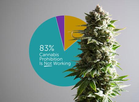 Kiwis believe cannabis prohibition failing, controls preferred