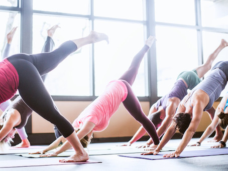 The Wonders of Yoga For College Students
