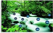 Are Negative Ions Good For You?