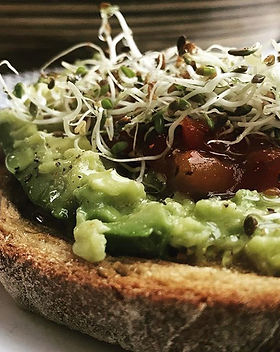 Avocado, salsa and alfalfa sprouts on ch