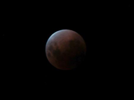 Lunar Eclipse Down Under Style