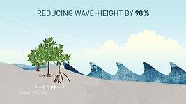 wave action.jpg