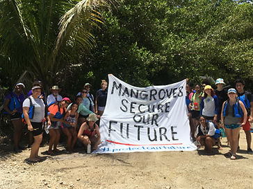 MAngroves are our future.jpg