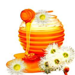 Powerful Honey