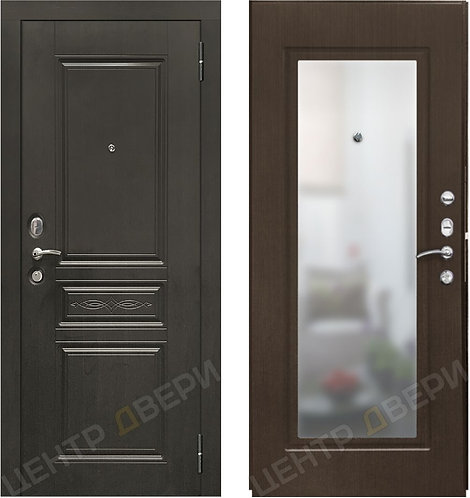 SD Prof-10 Троя-Зеркало, двери входные Саратов, двери входные металлические, входные двери Саратов, металлические двери