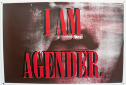 I Am Agender III