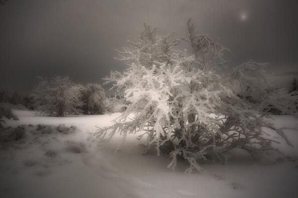 Jasserie - Pilat, Winter