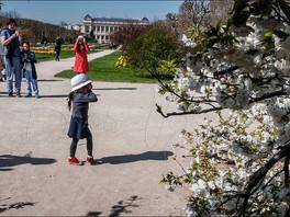 Paris, Jardin des Plantes.