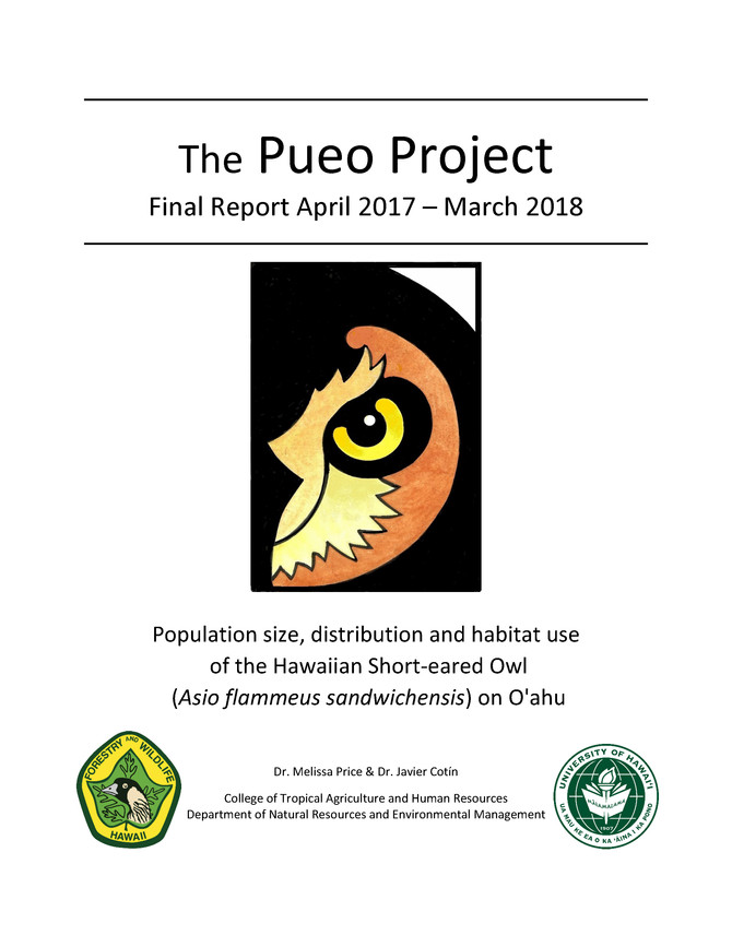 Pueo Project Final Report 2017-2018