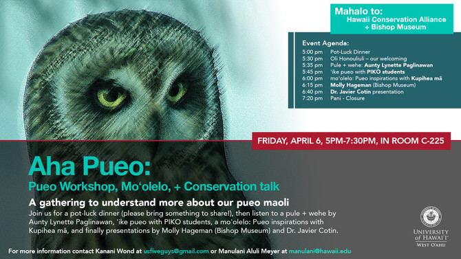 Aha Pueo! Pueo workshop, Mo'olelo + conservation talk