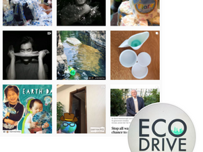 Local Eco-Accounts to Follow