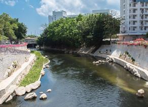 Revitalising Rivers