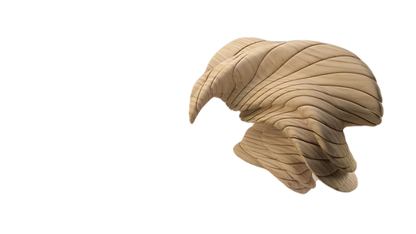 3D%20Wooden%20Figure_edited.png