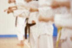 Karate Practice