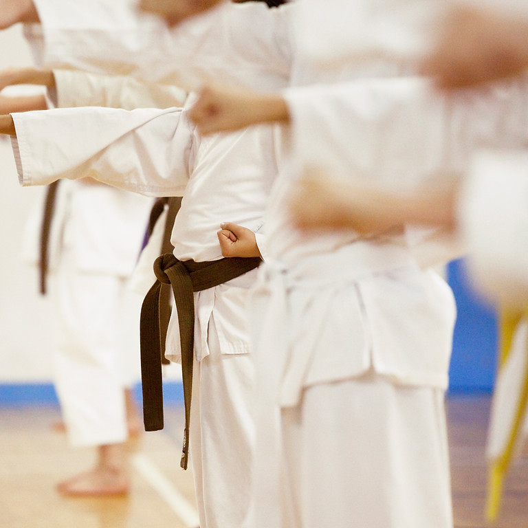 Adult Karate & Weapons training class