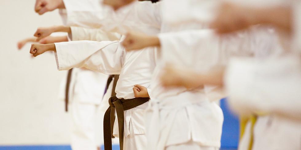 Initiation aux arts martiaux