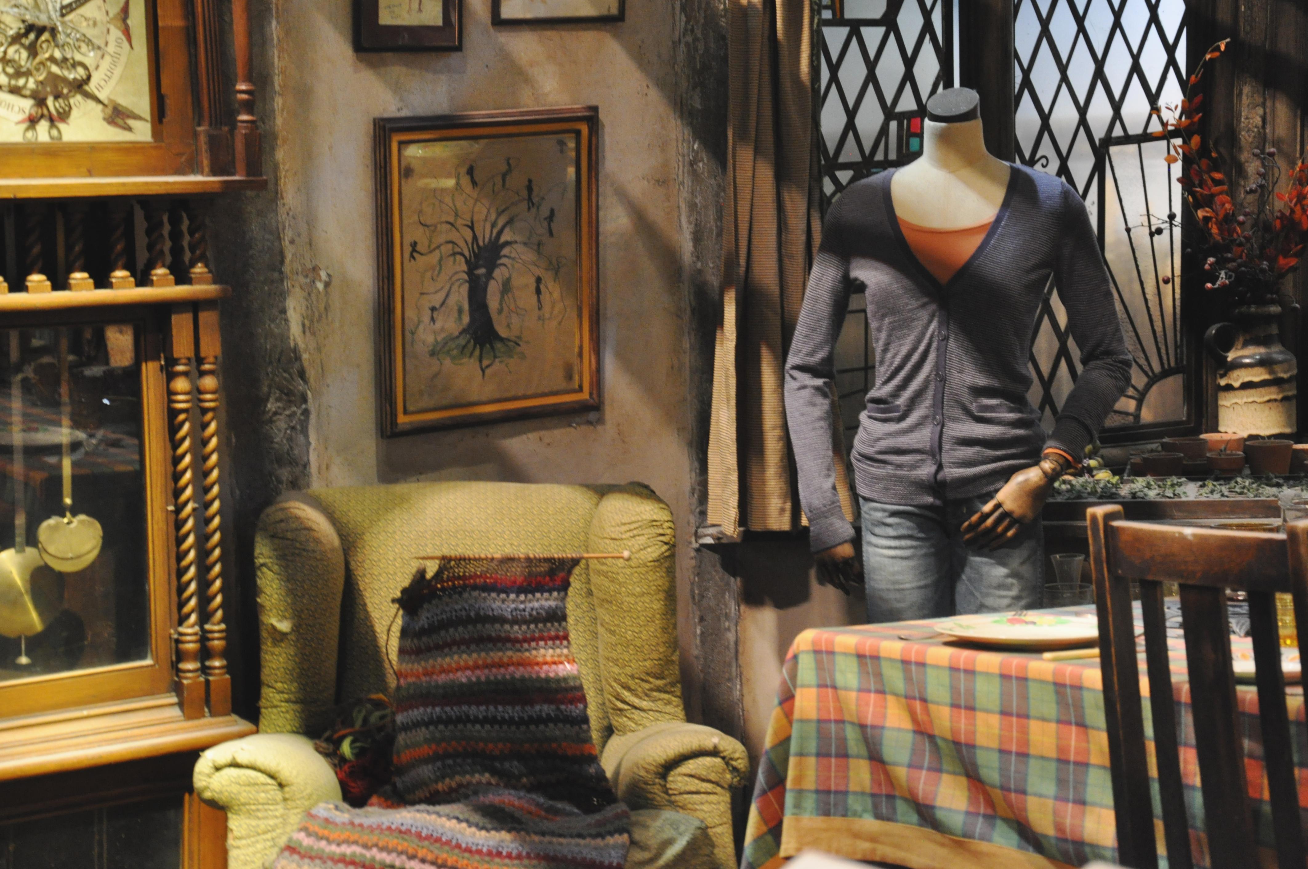The Weasley's Burrow