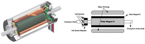 Brushless-DC-motor-cross-sectional-view.