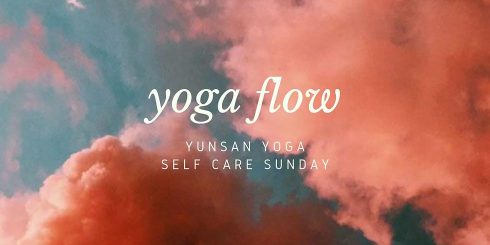 Full Body Flow • Carrick on Suir