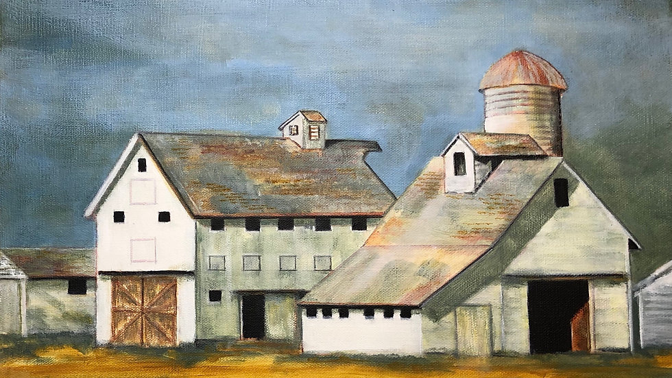 3 White Barns