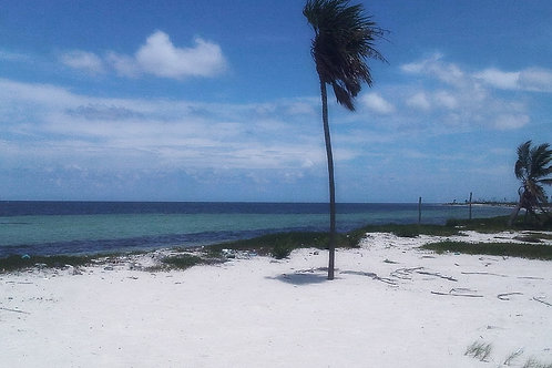 Amazing Land with Beach Front, Rio Indio, Mahahual.