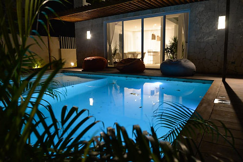 Wonderful Villa with six bedrooms, pool, tropical garden in Region 15, Tulum.