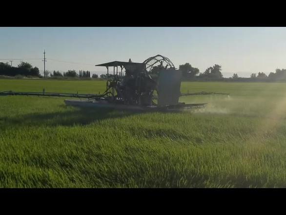 Hawkins Rice Farm