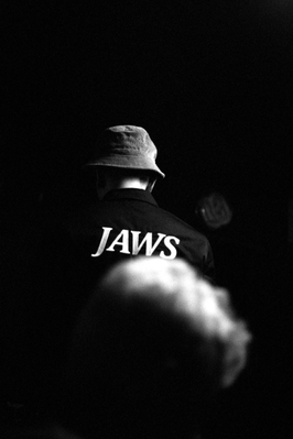 Jaws_43.png