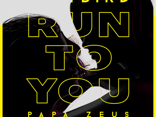 Majestic remixes Sam Bird & Papa Zeus single 'Run To You'